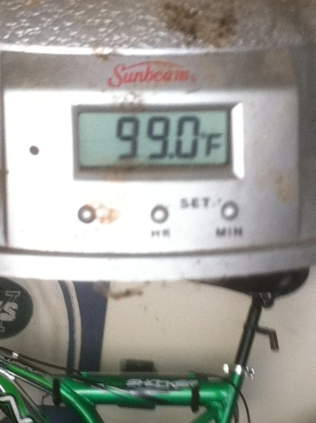 You aint never lied!! Temp in my garage on shaded side of house!!  RT @damienwoody This heat will make even the toughest SOB bow down!!!