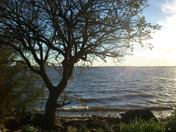 This is, too, my beautiful Porto Alegre. Nothing like a sunny riverside. :)