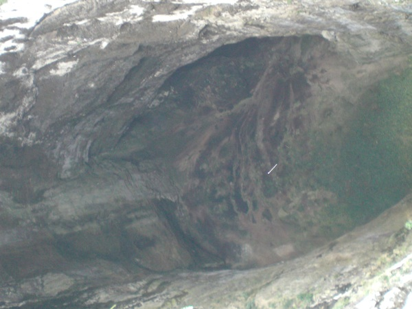 it´s a root in this photo!?...Huasteca Potosina.