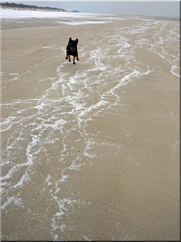 beach screen inklappen