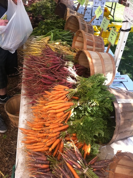 At Green City market: the most stunning array of carrots in every color
