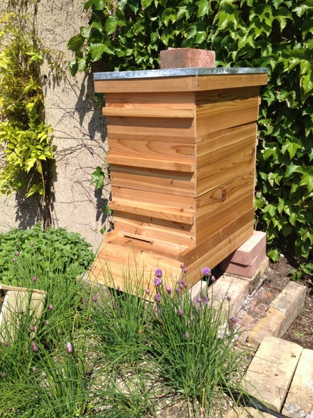 Big day in Bayless garden:  bees arrived 4 r first-ever bee hive!I am really excited 2 learn abt this fascinating world