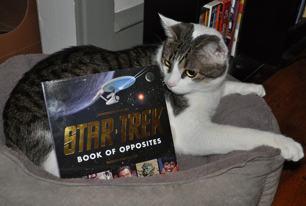 Star Trek Book of Opposites pwize fur #SCIFIpawty from @quirkbooks great fur kids or adult fans.