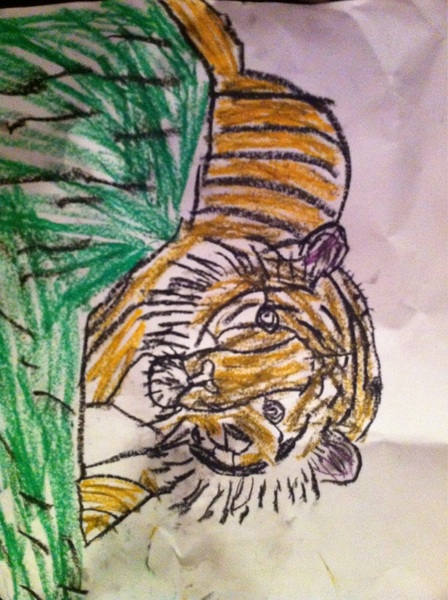 My seven year old has drawn a very nice tiger.